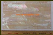 1pc Australian Greenlip abalone laminated sheet 140x240x1mm