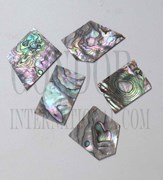 1oz Green abalone blanks mix size select 1.3mm