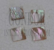 1pc Australian Greenlip abalone blanks 15x15x1mm