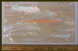 1pc Australian Greenlip abalone laminated sheet 140x240x2mm
