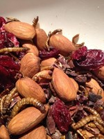 Cacao & Cranberry Insect Trail Mix