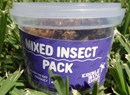Mixed Insect Pack