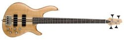CORT ARTISAN A4 ARTISAN STRING BASS OPEN PORE Natural ONE ONLY!
