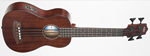 KALA RUMBLER UBASS FRETTED BASS UKULELE