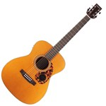 TANGLEWOOD HISTORIC SERIES AC/EL ORCHESTRA SIZE
