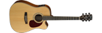 CORT MR710F AC/EL SOLID TOP DREADNOUGHT