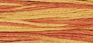 OverDyed Cotton - Weeks Dye Works 5 yard skein - Autumn Leaves #2234
