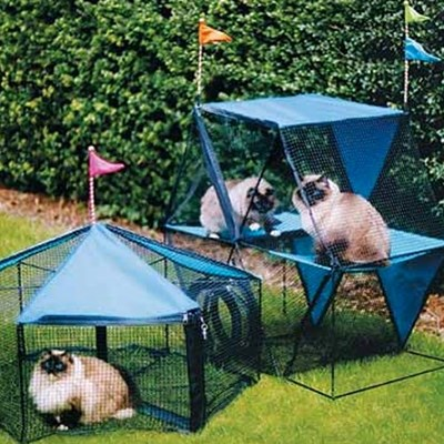 11 Benefits of Outdoor Enclosures For Cats