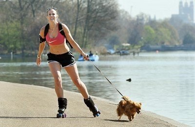 Should You Go Roller Skating With Your Dog?