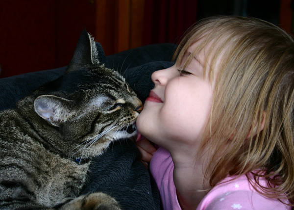 Why does my cat lick me?