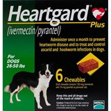 Heartgard Chewables Plus Green Dogs 26-50lbs (12-22kg) - 6 Chewables