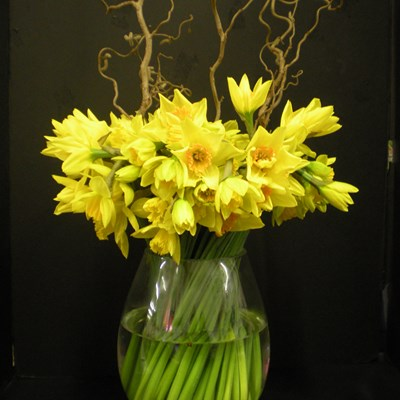 Nedlands Florist- Corporate Flowers for Perth Workplaces