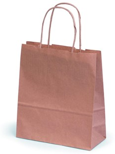 Brown kraft paper carrier bag with paper twisted handles 19x8x21cm