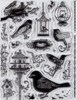 Sweet Tweets Birds & Cages Clear Stamps Great for Scrapbooking & Cardmaking
