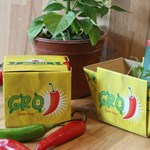 Grow Your Own Chilli Gro' pot Set