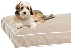 "Rectangular ""Repelz-It"" Dog Beds by Dog Gone Smart"