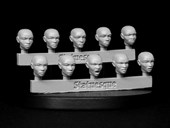 SMA205 Pulp Scale Female Heads - Bald