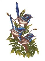 Blue Wren Tablecloth