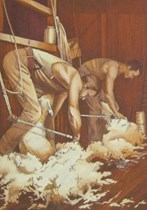 Shearers Picture Large Size