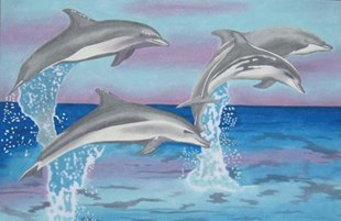 Dolphins at Sea Picture