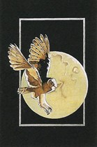Moonlight Owl on black velvet