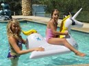 Airtime Inflatable Pool Toy - Pegasus Rider
