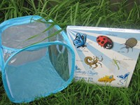 Creature kit for insect life cycles