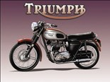 Triumph Motorbike - A5 Metal Wall Sign