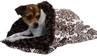Brown Damask Minky Snuggle Pup '3 n 1'