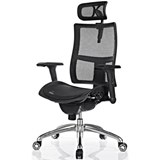 Zodiac Mesh Fully Adjustable Office Chair with Headrest
