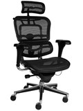 M5 Sub Executive M5 Office chair with  Headrest