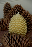 Beeswax Candle - Pine Cone