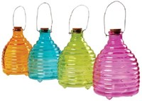 Coloured Wasp Traps