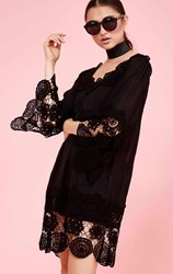 Curate by Trelise Cooper - linda love lace black tunic