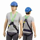 Miller Contractor 2 Point Harness