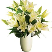 Oriental Lilies,  From $55