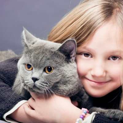 7 Cat Breeds That Are Great With Kids