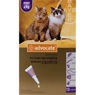 Advantage Multi (Advocate) Cats Over 8.8lbs (4kg) - 1 Pack