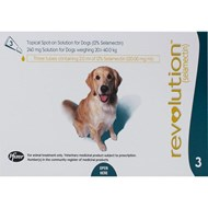 Revolution Teal Dogs 44-88lbs (20-40kg) - 1 Pack