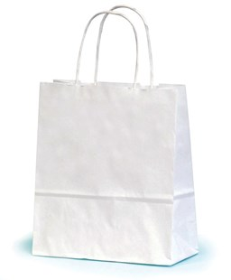 Small White Paper Gift Bag With Twisted Handles 19 x 7.5 x 20.5cm (SWNT019)