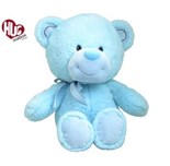 Regan Blue Bear 31cm