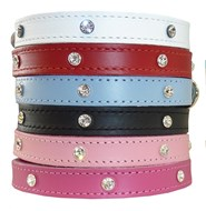 DOGUE Glam Rock Collars