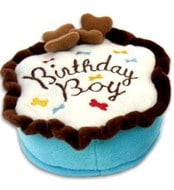Birthday Cake Boy Plush Dog Toy